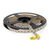 LED Strip 5m 84 LEDs p/m 12V RGBW Losse Strip_
