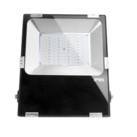 LED Breedstraler 50W RGB+CCT IP65 Zwart